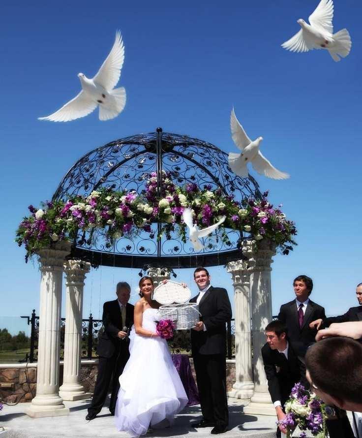 białe gołąbki na ceremonii ślubnej