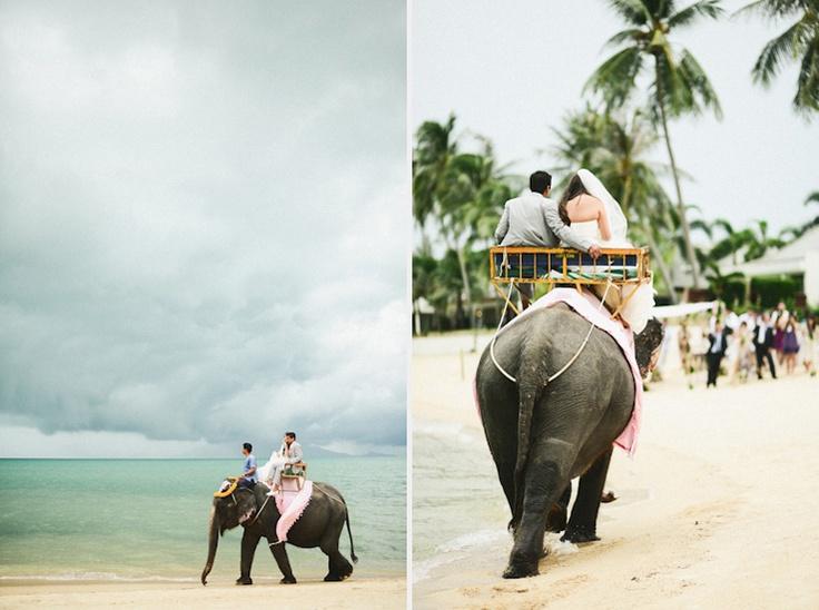 para młoda na słoniu