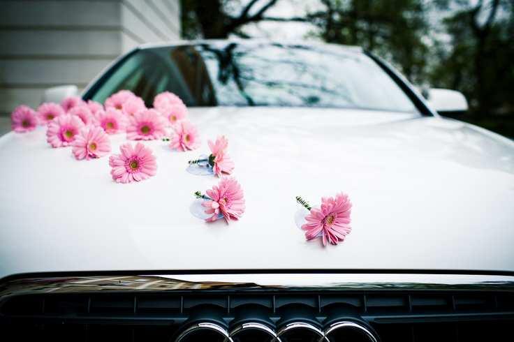 samochód do ślubu audi